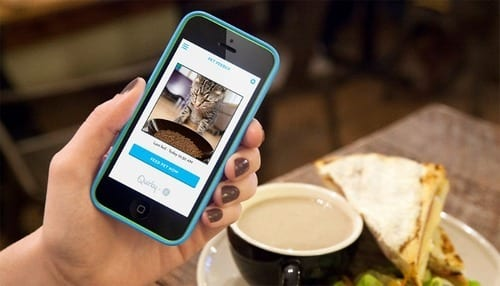 Feed your pet from the palm of your hand with Feedo